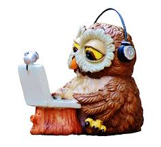 Owl and a laptop